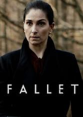 Search netflix Fallet