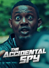 Search netflix The Accidental Spy