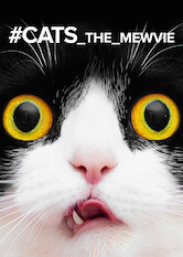 Search netflix #cats_the_mewvie