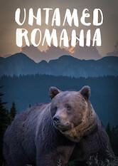 Search netflix Untamed Romania