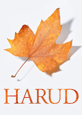 Search netflix Harud